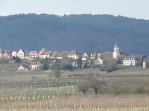 Alsace-feb-14-le-tasting-room02