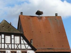 Alsace-feb-14-le-tasting-room09