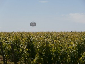 Bordeaux-june14-le-tasting-room37