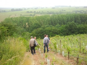 Loire-Wine-Discovery-Tour-le-tasting-room05