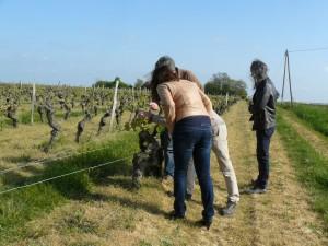 easter-loire-wine-tour-leduc-frouin-pithon-paile-le-tasting-room01