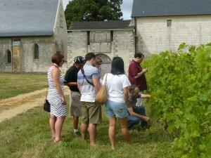 one-day-wine-tour-from-paris-pimpean27