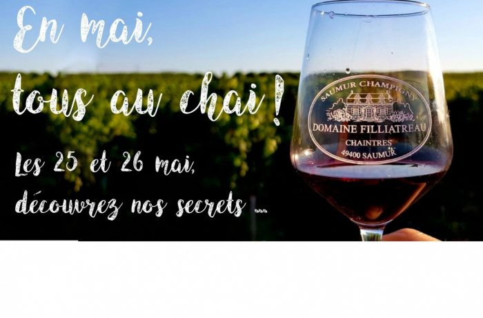 Open day Filliatreau loire wine tours