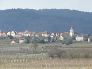 Alsace-feb-14-le-tasting-room02