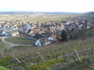 Alsace-feb-14-le-tasting-room22
