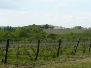 easter-loire-wine-tour-leduc-frouin-pithon-paile-le-tasting-room12