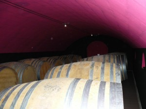 oak barrels in the newly painted barrel cellar at frederic mabileau