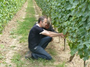 loire-wine-tour-le-tasting-room01