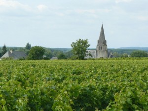 loire-wine-tour-le-tasting-room07