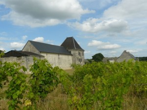 one-day-wine-tour-from-paris-pimpean26