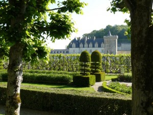 villandry-loire-valley-tours-le-tasting-room12