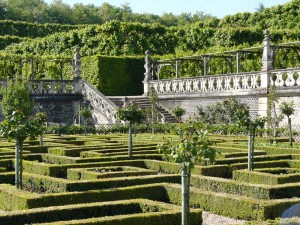 villandry-loire-valley-tours-le-tasting-room15