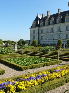 villandry-loire-valley-tours-le-tasting-room17